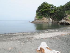 05usugumori3.jpg
