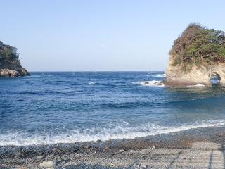 12-01hareare2.JPG